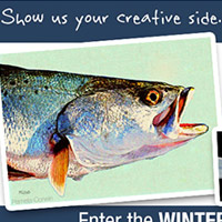 Enter the 2015 Winter Back to Class Contest with Strathmore