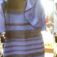What the Blue/Black/White/Gold Dress Tells Us About How We View Color