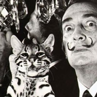 Did You Know- Salvador Dali