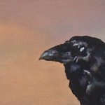 'A Raven in the Sun' by Debbie Anderson