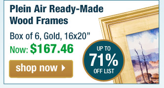 Plein Aire Frames - Custom Ready Made Frames