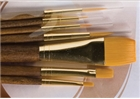 Princeton Real Value Brush Set 9141 - Golden Taklon Bristles