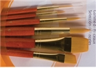 Princeton Real Value Brush Set 9153 - Golden Taklon Bristles