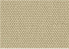 Unprimed Cotton Duck -