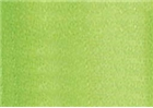Prismacolor Double-Ended Art Marker - Spring Green