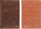 Blockx Oil Color - Burnt Sienna Deep
