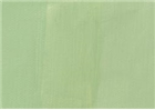 Charvin Professional Oil Paint - Celadon Green Light