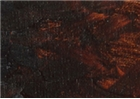 Williamsburg Handmade Oil Paint - Transparent Brown Iron Oxide