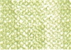 Cretacolor Pastel Pencils - Pea Green