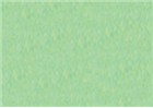 Rembrandt Soft Pastel - Permanent Green Deep 619.9