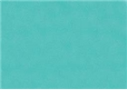 Sennelier Soft Pastels (Standard) - Turquoise Green 724