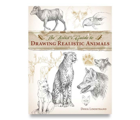 Wildlife illustration expert Doug Lindstrand provides step-by-step guidance on capturing everything!