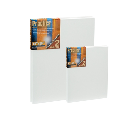 Practica Economy Stretched Canvas Twin Packs