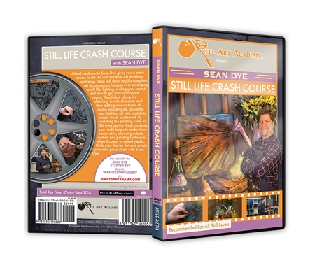 Reel Art Academy Sean Dye: Mixed Media DVDs