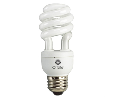 15 Watt Compact Fluorescent Edison Style Replacement Bulb