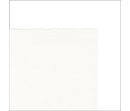 printmaking paper watermark