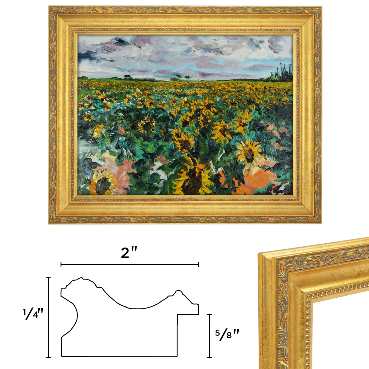 Annapolis Gold Frame Composite Guide