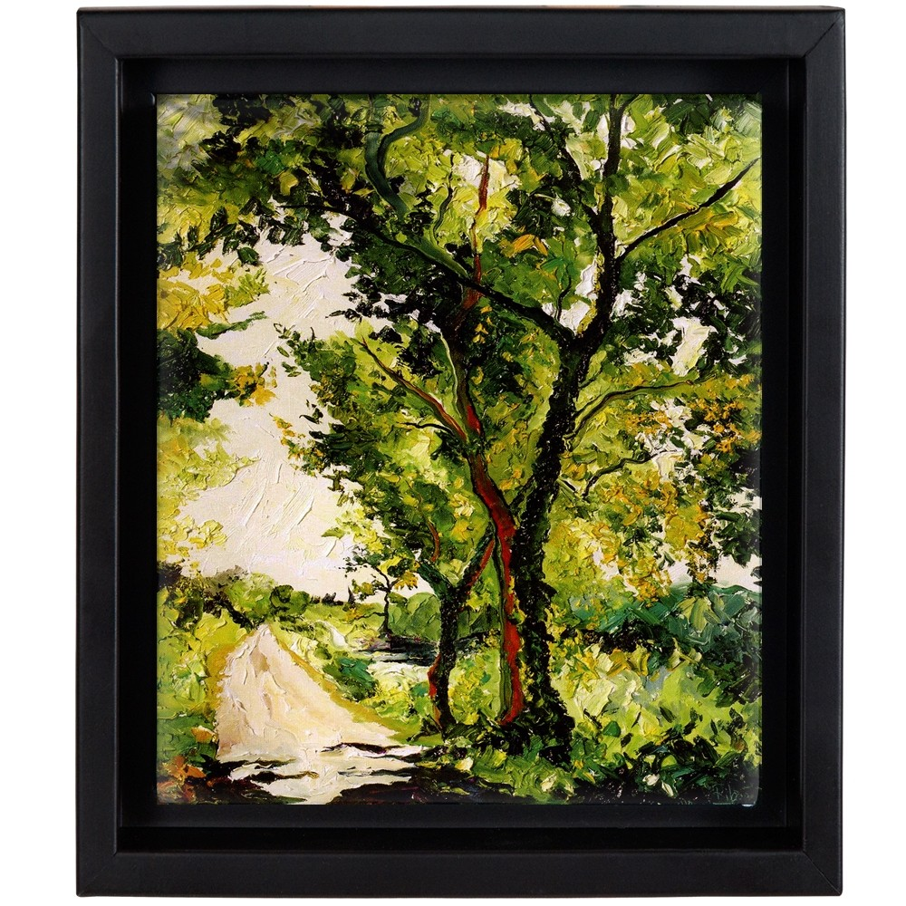 Canvas Floater Frame 3 4 Quot Deep Illusions Jerry S Artarama