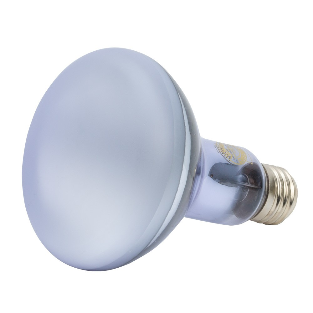 Halogen Reflector Bulbs