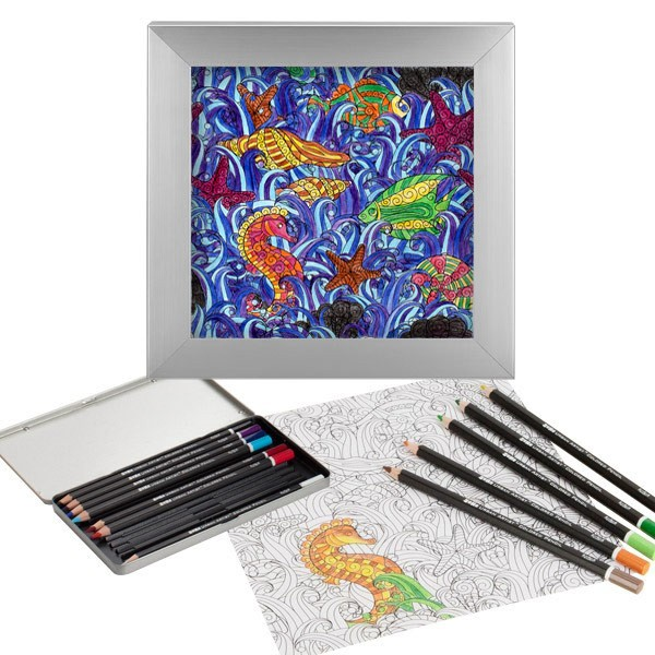 Complete Framed Coloring Kits Ready To Hange with SoHo Colored Pencils