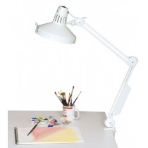 Daylight Combination Lamp And Replacement Bulbs