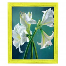 Southern Yellow Frames