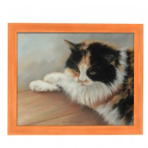 Country Chic Narrow Bourbon Orange Frames
