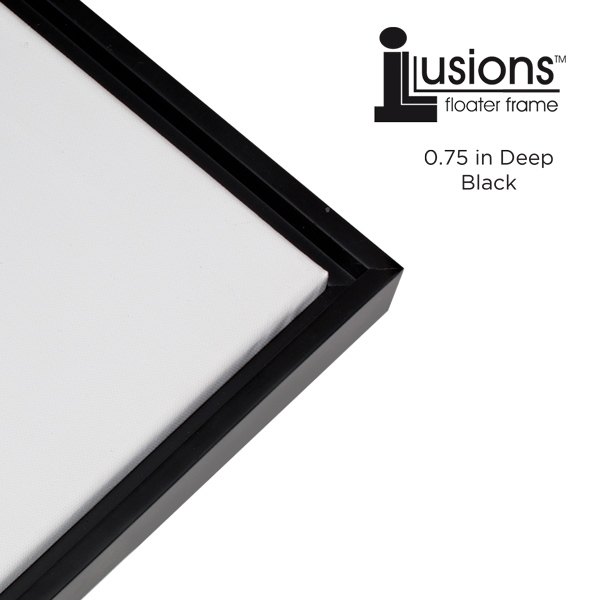 Illusions Canvas Finished Art Floater Frame 3 4 Quot Deep