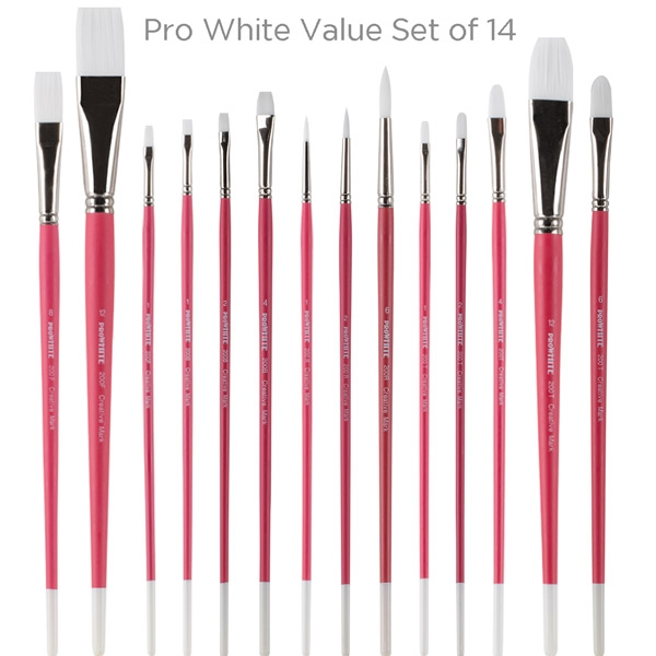 Pro White Value Brush Set of 14