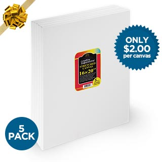 Creative Inspirations Super Value Stretched Canvas 5-Pack of 16x20