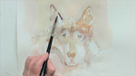 Painting a Wolf in Watercolors