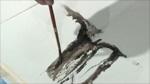 Matisse Liquid Pencil Water Soluble Graphite