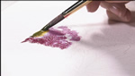 How To Mix Watercolor Paints on Paper