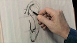 Simplifying the Ears in Charcoal Drawing