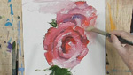 How To Paint A Rose Using Water Soluble Oils