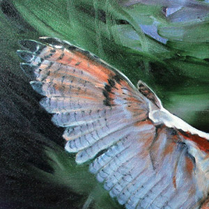 2nd Place: 'Flight' by Kim Freithaler of Waverly Hall, GA