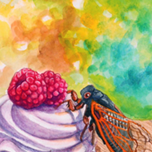 3rd Place: 'Cicadas on Your Cupcake' by Brandy