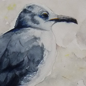 1st Place: 'Jon L. Seagull' by Annie Strack