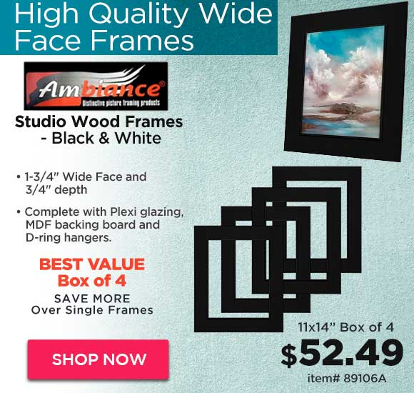 Ambiance Studio Wood Frames - Black & White