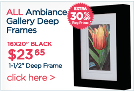 Ambiance Gallery Deep Frames Extra 30% OFF