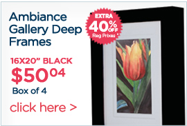 Ambiance Gallery Deep Frames Extra 40% off