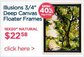 Illusions Floater Canvas Frames 3/4