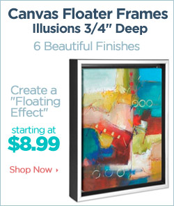 Illusions Canvas Floater Frames